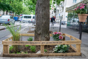 Paris et son permis de végétaliser